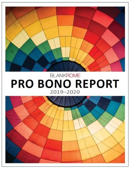 Pro Bono Report (2019-2020) cover image